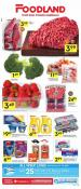 Foodland Ontario Flyer January 23 - 29 2020