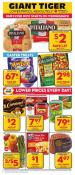 Giant Tiger Flyer March 29 - April 4 2017
